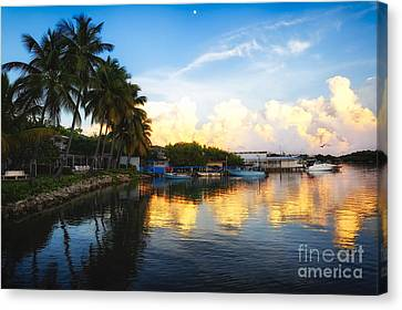 Tranquil Sunset In La Parguera Canvas Print by George Oze
