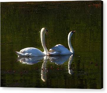 Tranquility Canvas Print by Barbara  White