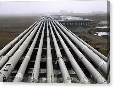 Trans-alaska Pipelines At An Oil Field Canvas Print by Joel Sartore