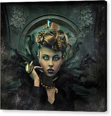 Transform Canvas Print by Julie King