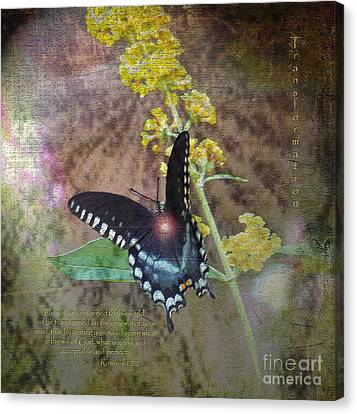 Transformation Canvas Print by Patricia Griffin Brett