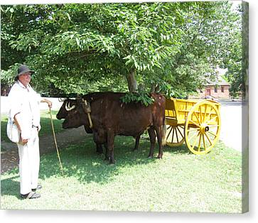 Transportation. Colonial Williamsburg. Virginia Canvas Print by Ausra Huntington nee Paulauskaite