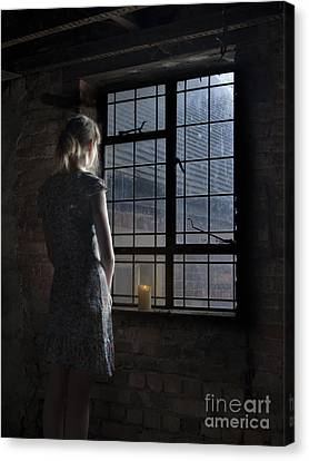Trapped - Colour Canvas Print by Steev Stamford