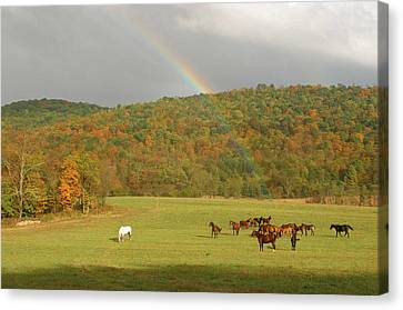 Treasure At The End Of The Rainbow Canvas Print by Gregory Scott