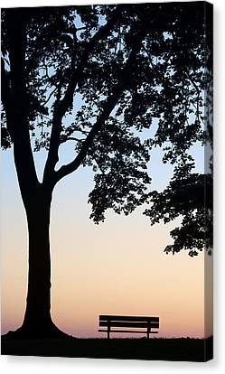 Tree And Bench Silhouette Canvas Print