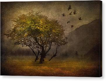 Park Scene Canvas Print - Tree And Birds by Svetlana Sewell