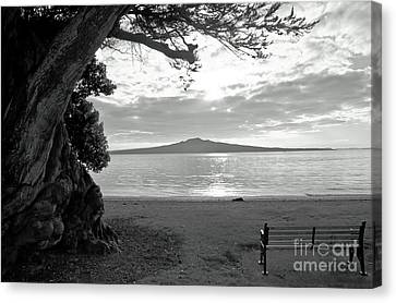 Tree And Ocean And Bench And Volcano Canvas Print