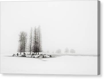 Tree In Snow Canvas Print by Yagosan