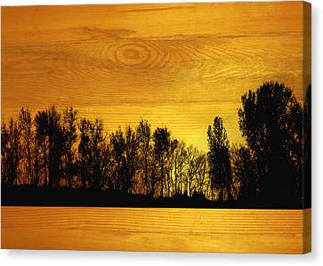 Tree Line On Wood Canvas Print by Ann Powell