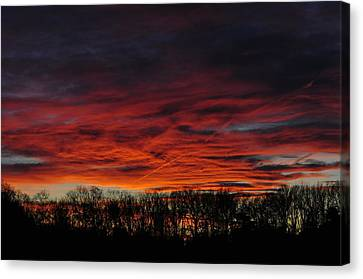 Tree Line Sunset Canvas Print by Peter  McIntosh
