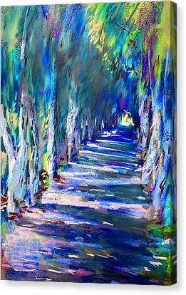 Tree Lines Canvas Print - Tree Lined Road by Ylli Haruni