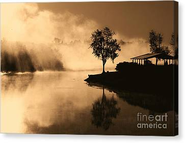 Tree Midst The Fog- Sepia Canvas Print by Gina Collins