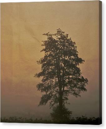 Tree Canvas Print by Odd Jeppesen