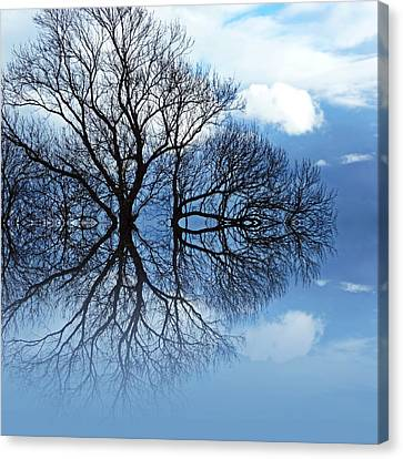 Tree Of Life Canvas Print by Sharon Lisa Clarke