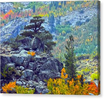 Tree On A Hill Canvas Print