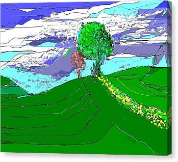 Tree On The Hill Canvas Print by Alberto Lacoius-Petruccelli