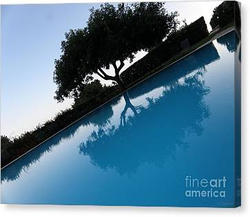 Canvas Print featuring the photograph Tree Reflection by Tanya  Searcy