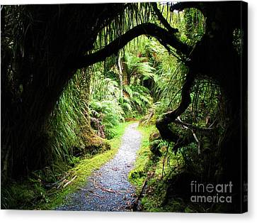 Canvas Print featuring the photograph Tree Tunnel by Michele Penner
