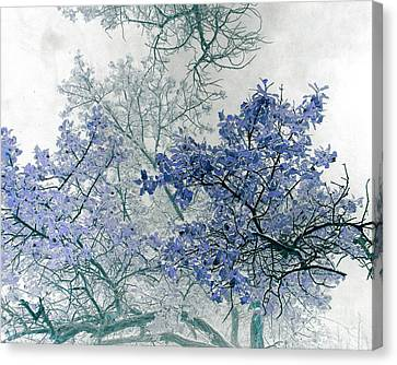 Trees Above Canvas Print