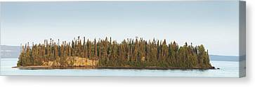 Trees Covering An Island On Lake Canvas Print