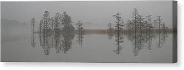 Mist Canvas Print - Trees In The Mist Panorama by Claude McCoy