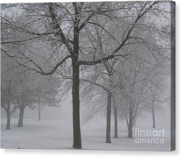 Canvas Print featuring the photograph Trees In The Winter by Yumi Johnson