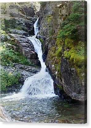 Tricky Falls Canvas Print by Marty Koch