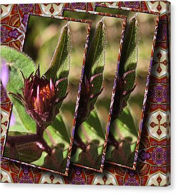 Canvas Print featuring the photograph Triple Buds by Mario Carini
