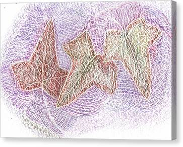 Triple Leaves Canvas Print by Anne-Elizabeth Whiteway