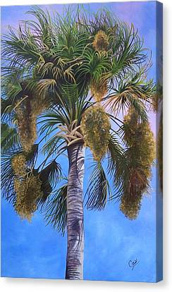 Tropical Breezes Canvas Print by Karen Casciani