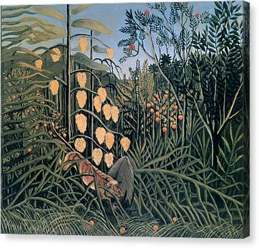 'tropical Forest' By Henri Rousseau Canvas Print by Photos.com