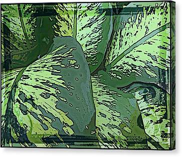 Tropical Green Canvas Print by Mindy Newman