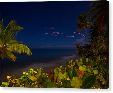Tropical Night Canvas Print by Tim Fitzwater