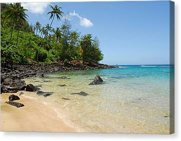 Canvas Print featuring the photograph Tropical Paradise by Lynn Bauer