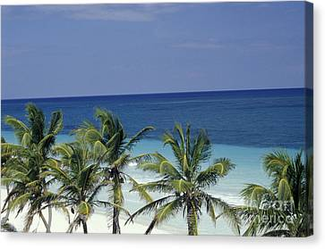 Canvas Print featuring the photograph Tropical Paradise Sian Kaan Mexico by John  Mitchell