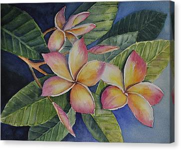 Tropical Plumerias Canvas Print