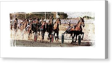 Canvas Print featuring the photograph Trotting 3 by Pedro Cardona