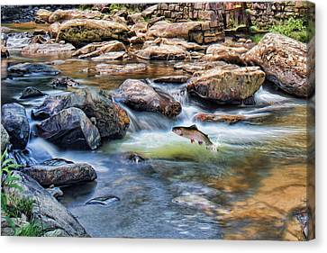 Canvas Print featuring the digital art Trout Stream by Mary Almond