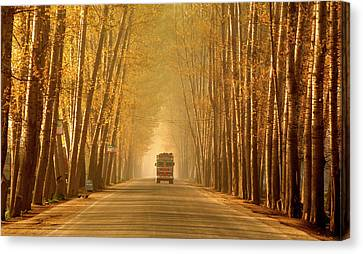 Truck In Golden Tunnel Canvas Print by PKG Photography