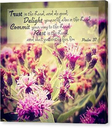 Inspirational Canvas Print - Trust, Delight, Commit, Rest. Simple As by Traci Beeson