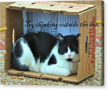 Try Thinking Outside The Box Canvas Print