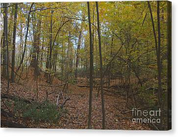 Canvas Print featuring the photograph Tryon Park by William Norton