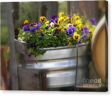 Tub Beauty Canvas Print
