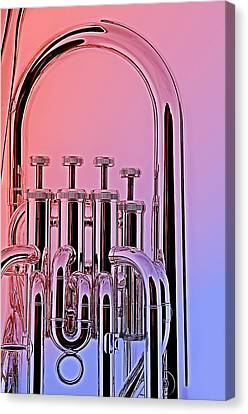 Tuba Euphonium Valves Isolated Canvas Print by M K  Miller