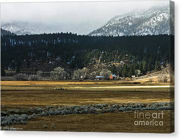 Tucked Away Like A Good Nights    Sleep Canvas Print by Mitch Shindelbower