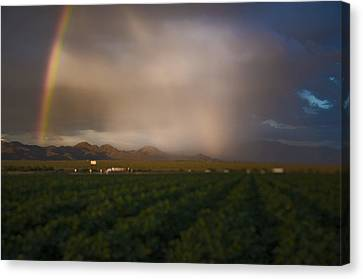 Tucson's Promise Canvas Print by Keith Sanders