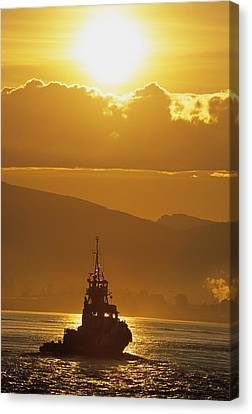 Tugboat At Sunrise, Burrard Inlet Canvas Print by Ron Watts