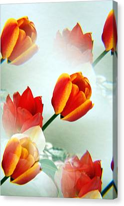 Tulip Abstract Canvas Print by Marilyn Hunt