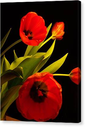 Canvas Print featuring the photograph Tulip Arrangement 1 by Peter Mooyman