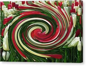 Tulip Tornado Canvas Print by Rick Rauzi